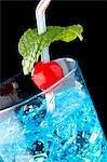 Maraschino Cherry and Mint Garnish in Oasis Cocktail