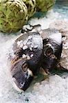 Sea bream with sea salt and artichokes