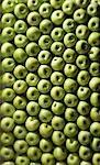 Granny Smith Äpfel (Vollformat)