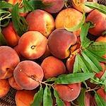Organic peaches in a basket (close-up)
