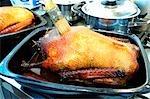 Brushing stuffed roast goose with roasting juices
