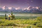 Male tourist views Mt.Silverthrone & Alaska Range near Wonder Lake Denali National Park Summer
