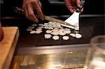 Sliced Garlic, Kobe, Hyogo, Kansai Region, Honshu, Japan