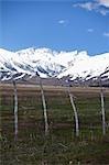 Montagnes et pâturages, sud-est de l'Orégon, États-Unis