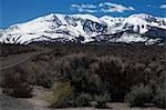 Scène de montagne, Mono Lake, Californie, USA