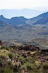 Pierre tombale sur la vieille Route 66, près de Oatman, Arizona, USA