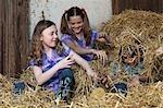 Kids fighting in hay