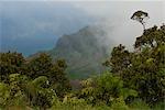 USA, Hawaii, Kauai, mist in Honopu Valley