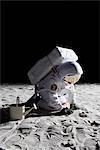 Un astronaute sur la lune de jardinage