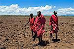 Portrait de Masai, Masai Village, lac Magadi, Kenya, Afrique