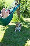 Homme couché sur le hamac dans le jardin avec le chien