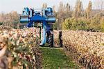 Grape Harvester in Chateau Saint-Georges Vineyard, Saint-Emilion, Bordeaux, Gironde, Aquitaine, France