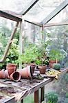 Pots renversés sur établi dans potting shed