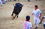 Fest von San Fermin, Plaza de Toros de Pamplona, Pamplona, Navarra, Spanien