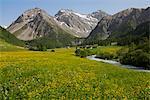 Vue au Mittaghorn, Plattenfluh et Hochducan, Sertig, Davos, Grisons, Suisse
