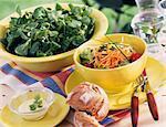 Salade salade de mesclun et AJNB