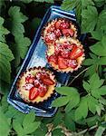 Tartelettes aux fraises et citronniers
