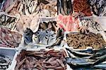 Fish at Esquilino Market, Rome, Italy