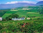 In der Nähe von Anascaul, Co. Kerry, Irland;Traditionelle Bauernhöfe mit Patchwork-Landschaft