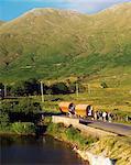 Doo Lough, Co Mayo, Ireland, Traditional Caravans