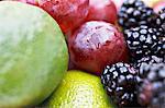 Gros plan du fruit