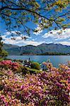 Villa Carlotta on Lake Como, Tremezzo, Lombardy, Italy