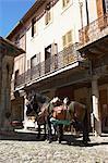 Lagrasse, Aude, Languedoc-Roussillon, France
