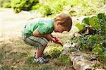 Boy Gardening, Domaine de l'Ardagnole, Fajac-en-Val, Languedoc Roussillon, France