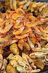 Crevettes au marché, St Tropez, Var, Provence, Provence-Alpes-Cote d'Azur, France
