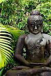 Bouddha, environnée par les arbres en pierre