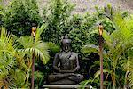 statue de Bouddha entourée de palmiers de Pierre