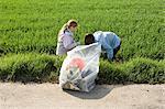 Girls picking up roadside litter