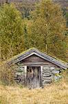 Kleine Hütte im Wald