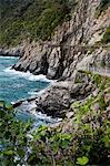 Passerelle, Manarola, Riomaggiore, Cinque Terre, Province de La Spezia, côte ligure, Italie