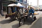L'âne et charrette, Casablanca, Maroc, l'Afrique du Nord, Afrique