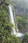 Dawson Falls, Mount Taranaki National Park (Mount Egmont National Park), Taranaki, North Island, New Zealand, Pacific