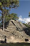 Monticule No.16, Cour Ouest, parc archéologique de Copan, patrimoine mondial de l'UNESCO, Copan, au Honduras, Amérique centrale