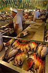 Piranhas au marché central de Manaus, au Brésil, en Amérique du Sud