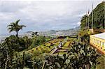 Vue sur le jardin botanique, Funchal, Madeira, Portugal, Europe