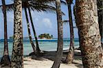 Islands in the San Blas archipelago in the Caribbean Sea, seen through palm trees on Dog Island, Panama, Central America