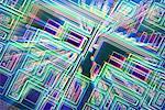 Micropuce. Microphotographie éclairage de la surface d'une puce électronique à l'aide de la microscopie en contraste d'interférence différentielle (DIC). Grossissement: x 500.