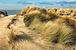 Woman Walking on Dunes, Haamstede, Zeeland, Netherlands