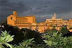 Santa Maria Assunta cathedral, Siena, Italy
