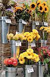 Flower stall,  London, England