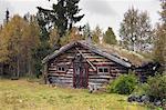 Hütte im Wald, Schweden