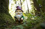 GNOME en forêt, toît Grove, Parc Provincial MacMillan, l'île de Vancouver, en Colombie-Britannique, Canada