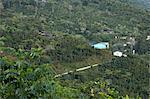 Houses on Hillside, Agua Dulce, Huehuetenango Department, Guatemala