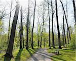 Park, Aschaffenburg, Franconia, Bavaria, Germany