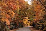 Blue Ridge Parkway, North Carolina, USA