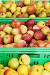 Trois emplacements de pommes